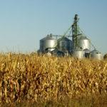 industrial-farming